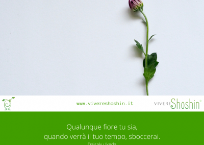 Qualunque fiore tu sia, quando verrà il tuo tempo, sboccerai. – Daisaku Ikeda