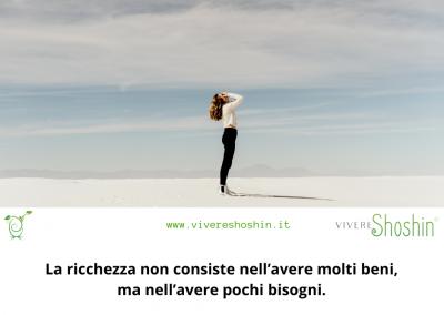 La ricchezza non consiste nell'avere molti beni, ma nell'avere pochi bisogni. – Epitteto