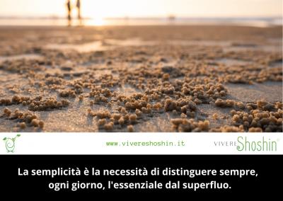 La semplicità è la necessità di distinguere sempre, ogni giorno, l'essenziale dal superfluo. – Ermanno Olmi