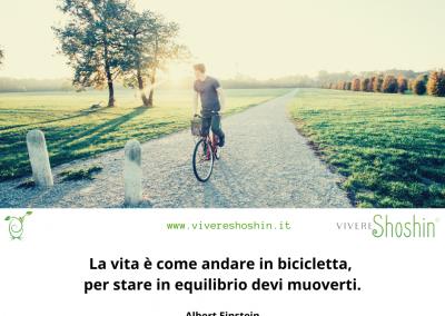 La vita è come andare in bicicletta, per stare in equilibrio devi muoverti. - Albert Einstein