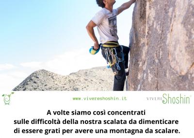 A volte siamo così concentrati sulle difficoltà della nostra scalata da dimenticare di essere grati per avere una montagna da scalare. - Oprah Winfrey