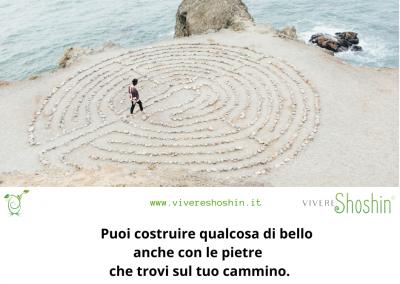 Puoi costruire qualcosa di bello anche con le pietre che trovi sul tuo cammino. - Goethe