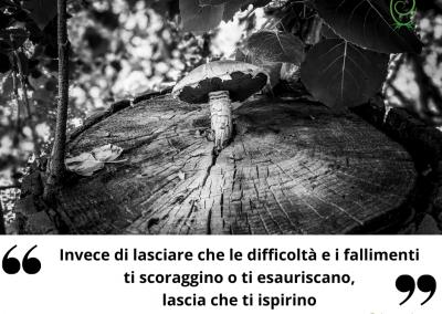Invece di lasciare che le difficoltà e i fallimenti ti scoraggino o ti esauriscano, lascia che ti ispirino. - Michelle Obama