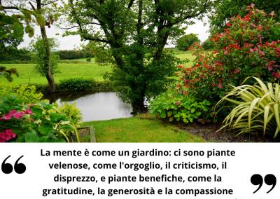 La mente è come un giardino: ci sono piante velenose, come l'orgoglio, il criticismo, il disprezzo, e piante benefiche, come la gratitudine, la generosità e la compassione.