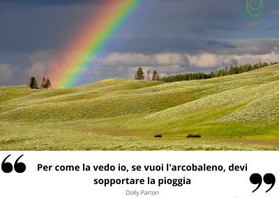 Per come la vedo io, se vuoi l'arcobaleno, devi sopportare la pioggia. - Dolly Parton