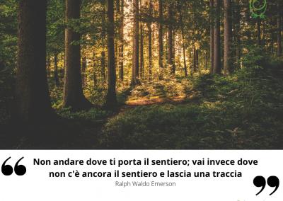 Non andare dove ti porta il sentiero; vai invece dove non c'è ancora il sentiero e lascia una traccia. - Ralph Waldo Emerson